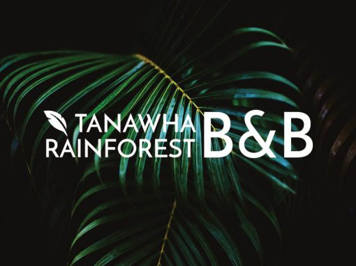Tanawha Rainforest B&B